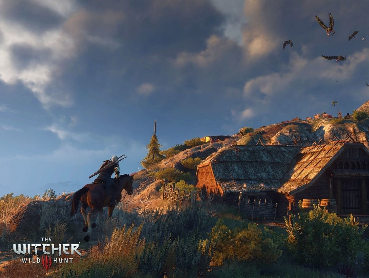 Cropped the witcher 3